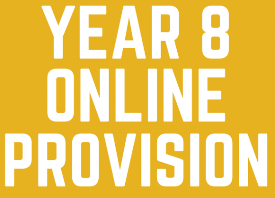 YEAR 8 ONLINE PROVISION